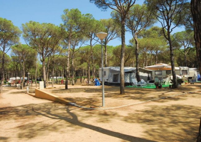 Cypsela-resort-9-